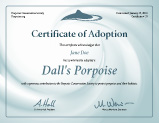 Example of printable adoption certificate.